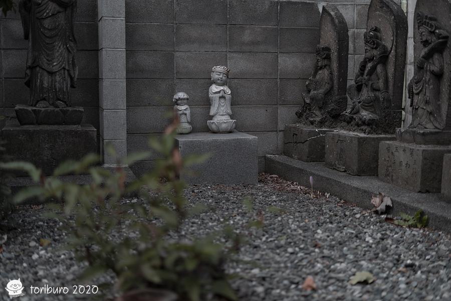 f:id:toriburo:20200930094957j:plain