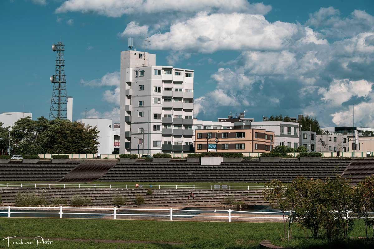 f:id:toriburo:20210830214507j:plain
