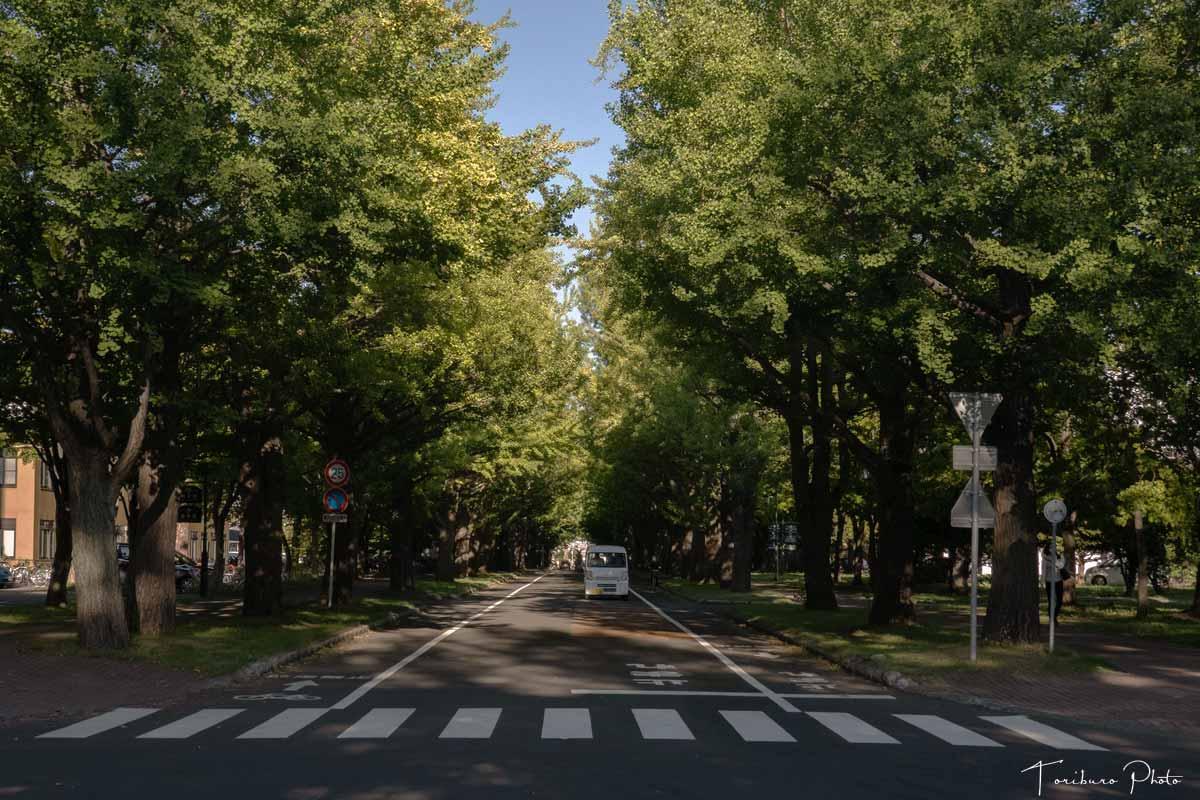 f:id:toriburo:20210916221618j:plain