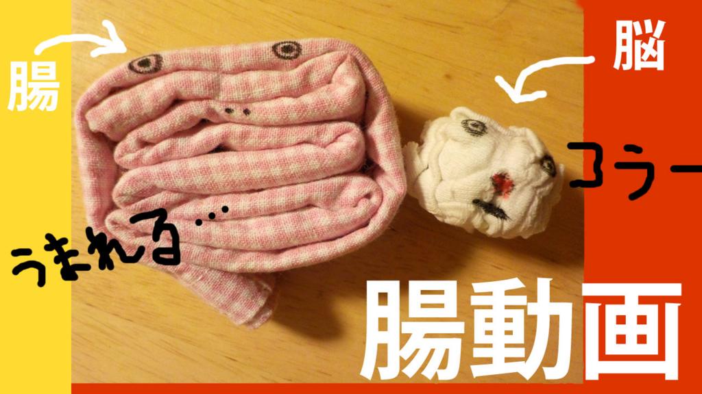 f:id:toridashi-foh:20161117231157j:plain