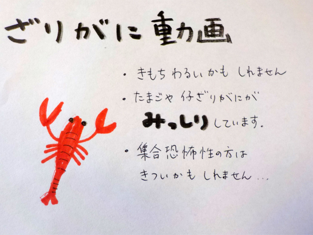 f:id:toridashi-foh:20170117190348j:plain
