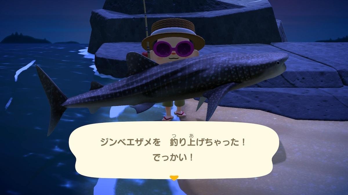 f:id:toriid:20200613061415j:plain