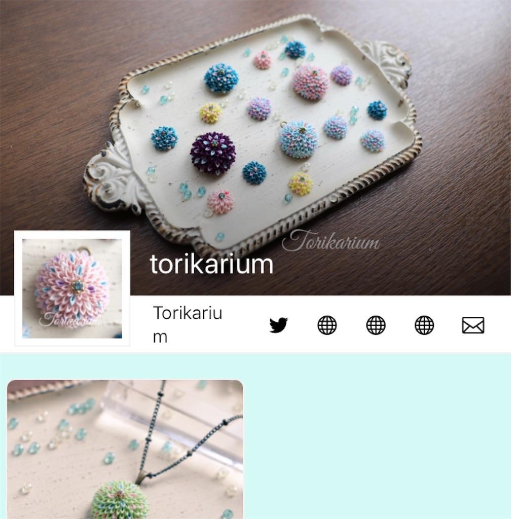 f:id:torikarium:20181130194933j:image