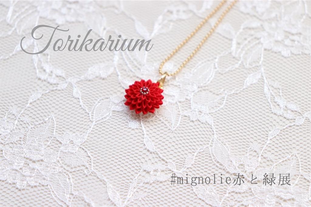 f:id:torikarium:20191206231110j:image