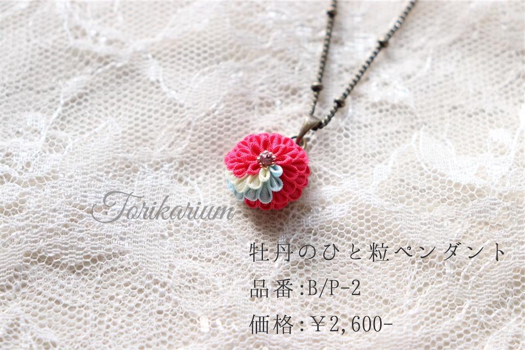 f:id:torikarium:20200111194834j:image