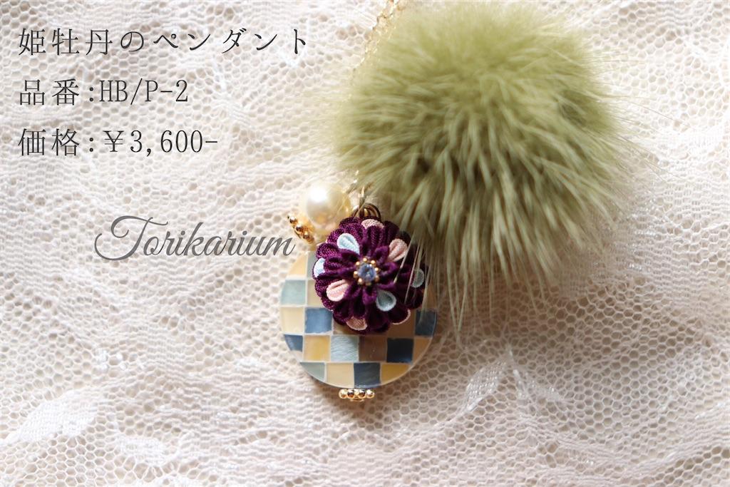 f:id:torikarium:20200111194926j:image