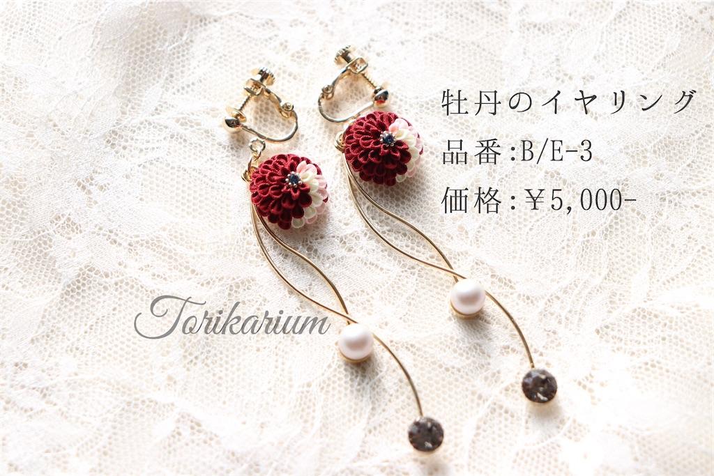 f:id:torikarium:20200111195121j:image