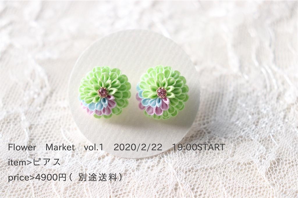 f:id:torikarium:20200215142458j:image