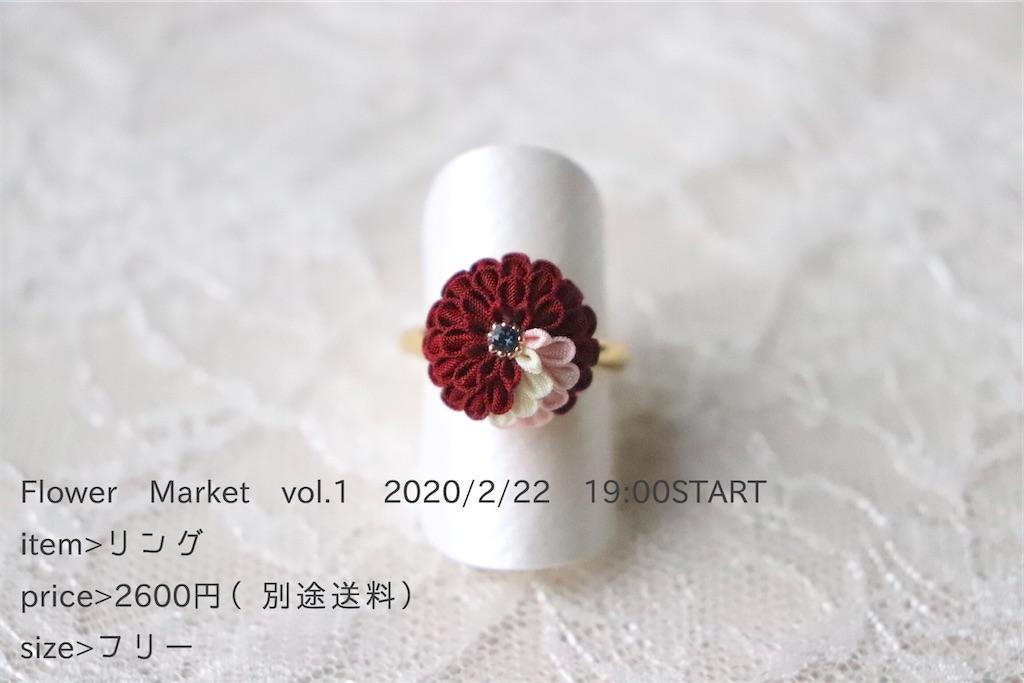 f:id:torikarium:20200215142550j:image