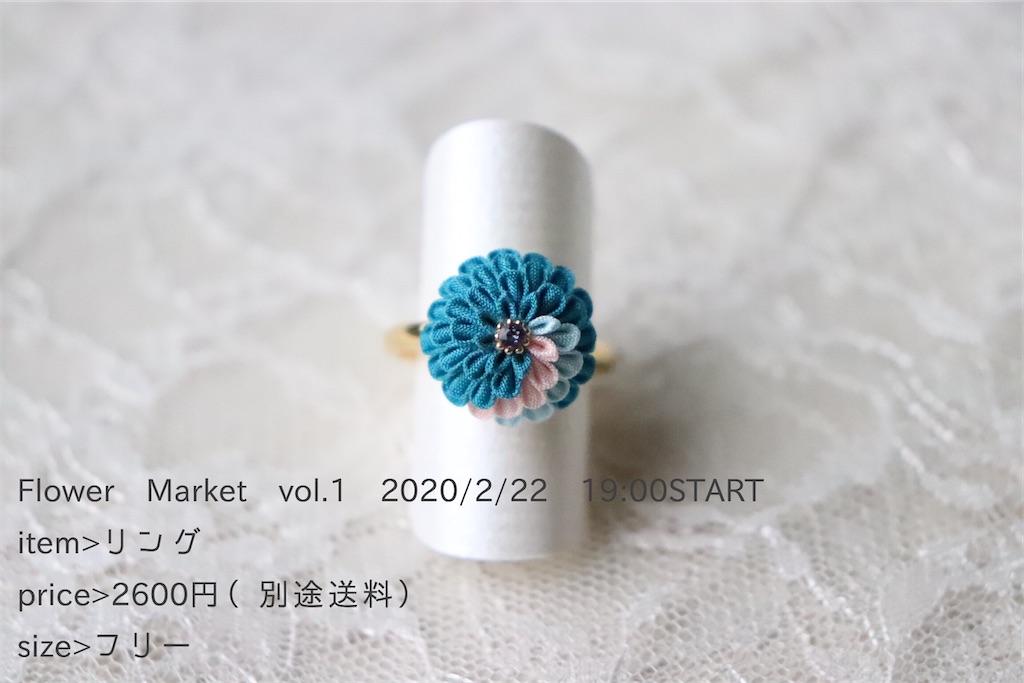 f:id:torikarium:20200215142554j:image