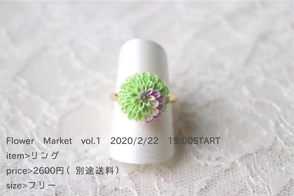f:id:torikarium:20200215142601j:image