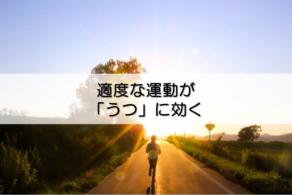 f:id:torikooptimism:20180625170437j:plain