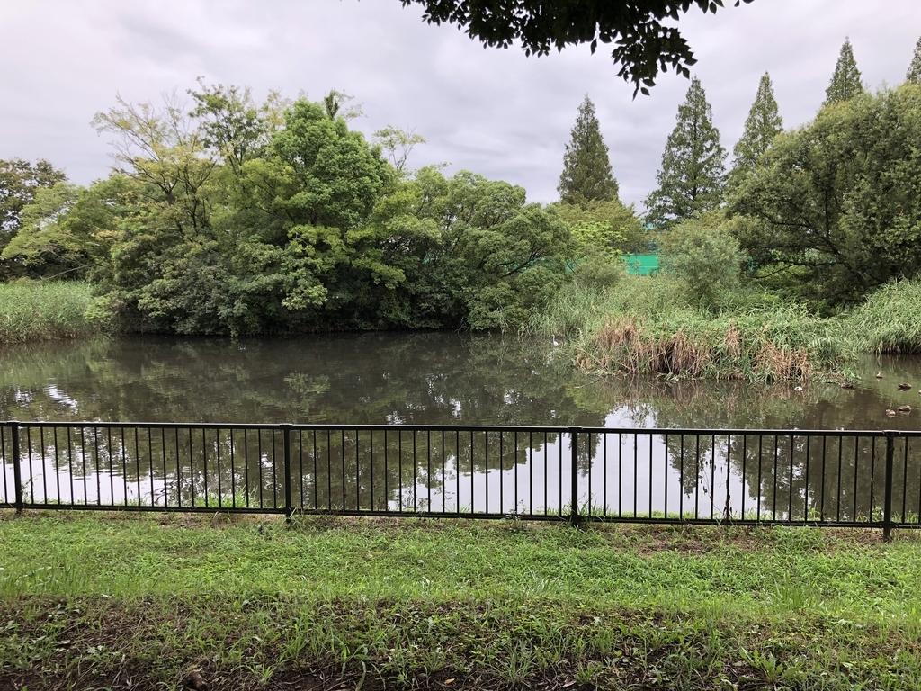 f:id:torimi-river:20180902204038j:plain