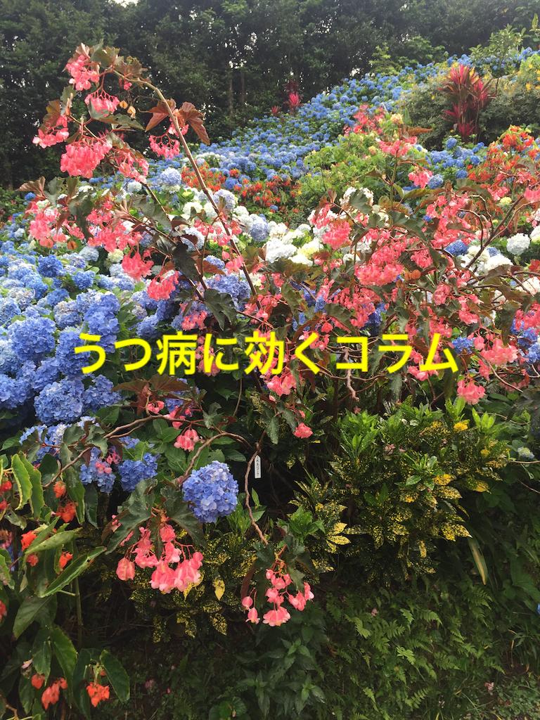 f:id:torimotoakira:20170710170121p:image