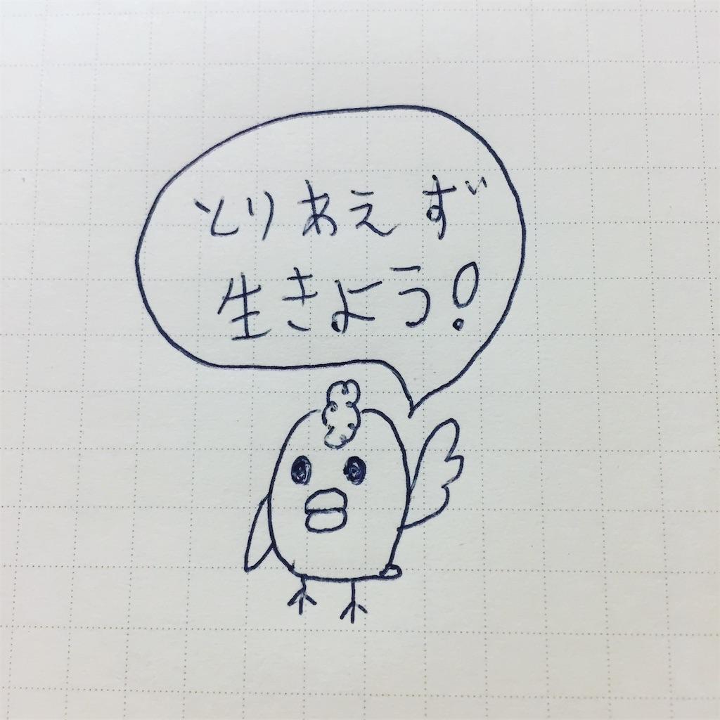 f:id:torimotoakira:20181231015035j:image