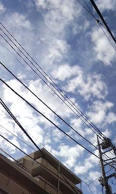 f:id:torimusi:20081012090318j:image