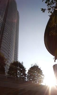 f:id:torimusi:20081015182508j:image