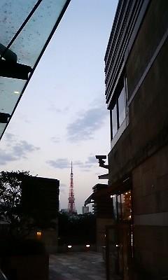 f:id:torimusi:20081015182509j:image