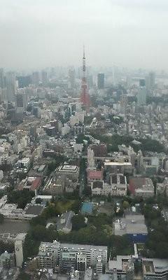 f:id:torimusi:20090630205535j:image