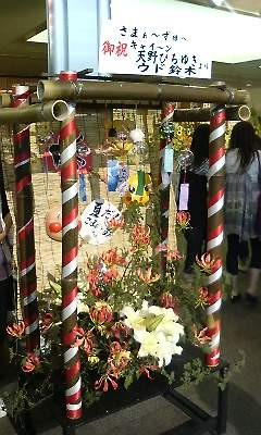 f:id:torimusi:20090705221842j:image