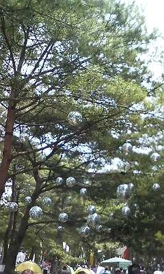 f:id:torimusi:20090731141553j:image
