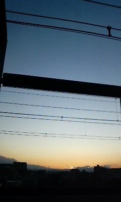 f:id:torimusi:20091027165320j:image