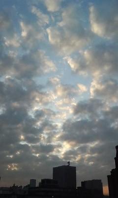 f:id:torimusi:20091228235647j:image