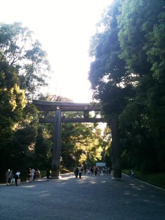 f:id:torimusi:20100501203318j:image