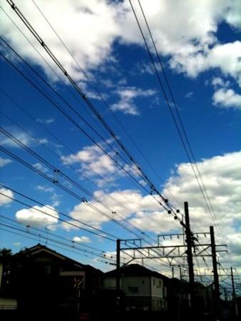 f:id:torimusi:20110203025100j:image