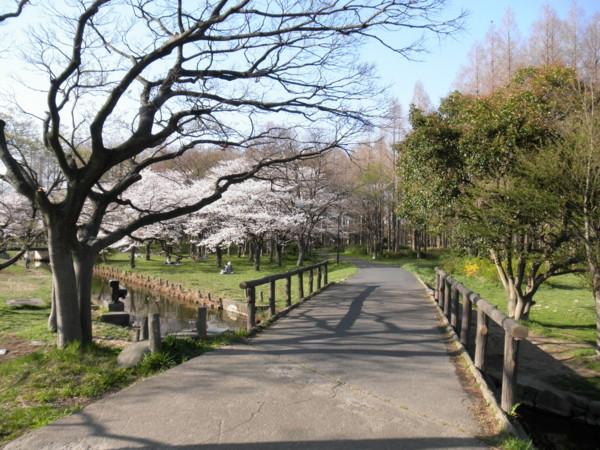 f:id:torimusi:20110413232741j:image