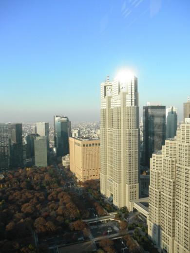 f:id:torimusi:20111224014547j:image