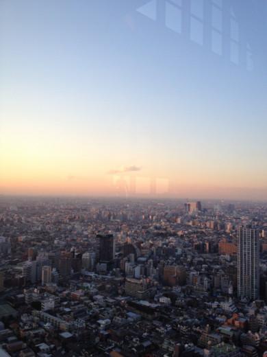 f:id:torimusi:20111224014550j:image