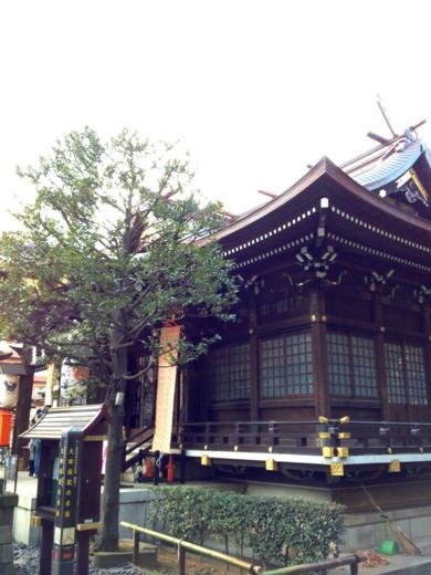 f:id:torimusi:20120104025641j:image