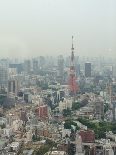 f:id:torimusi:20120511133446j:image