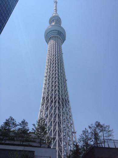 f:id:torimusi:20120520090142j:image