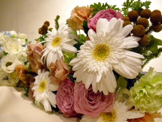 f:id:torimusi:20121119230529j:image