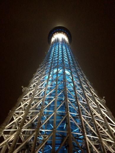 f:id:torimusi:20121216110612j:image