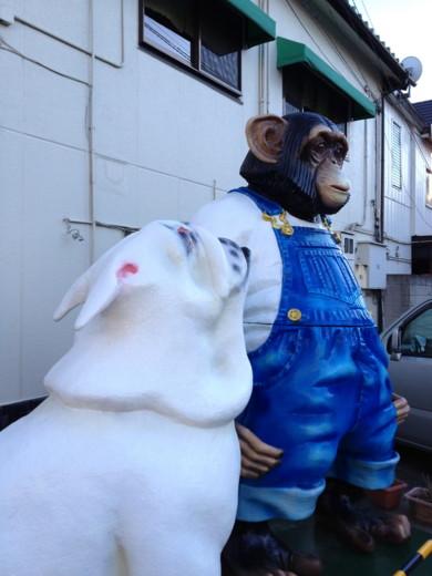 f:id:torimusi:20130106011119j:image