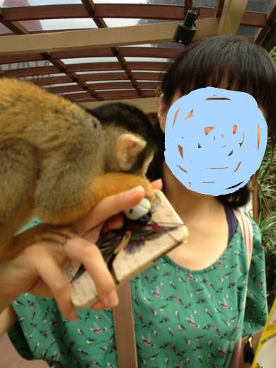 f:id:torimusi:20130907230143j:image