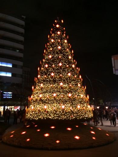 f:id:torimusi:20131224224944j:image