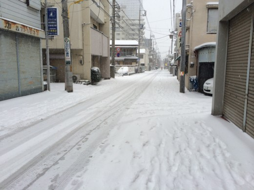 f:id:torimusi:20140219201635j:image
