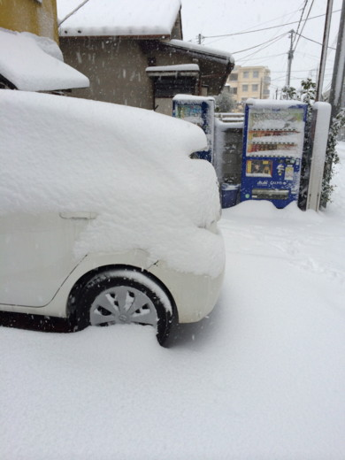 f:id:torimusi:20140219201636j:image
