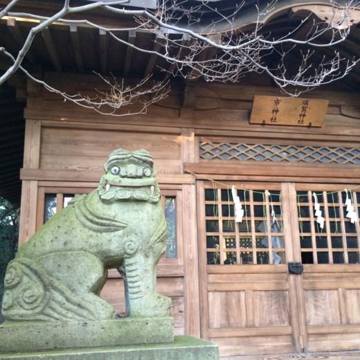 f:id:torimusi:20140219213151j:image