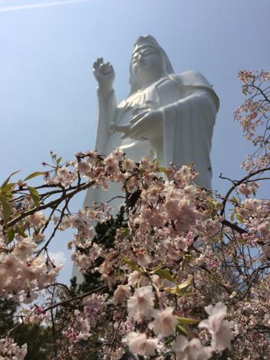 f:id:torimusi:20140428183332j:image