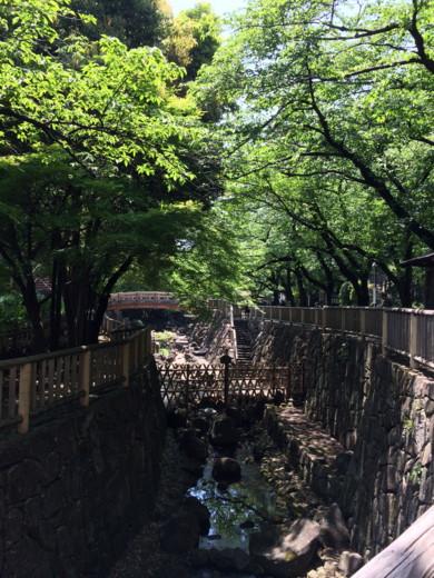 f:id:torimusi:20140507115215j:image