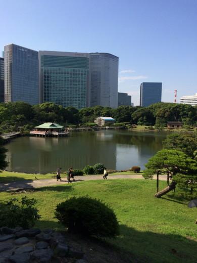 f:id:torimusi:20140616002405j:image