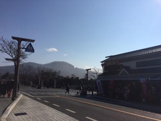f:id:torimusi:20150101170140j:image