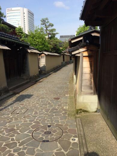 f:id:torimusi:20150607155339j:image