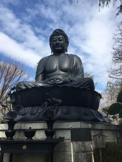 f:id:torimusi:20160218111127j:image