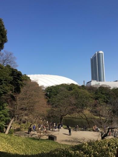 f:id:torimusi:20160326145345j:image